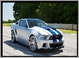 Film, Need for Speed, Ford Mustang GT, Shelby