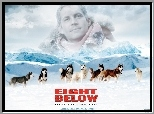 psy, góry, Eight Below, Paul Walker