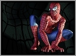 Film, Spider-Man